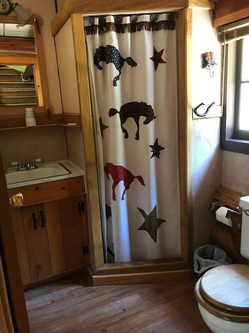 Bathroom in the Buckaroo