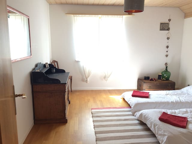 Nice&peaceful room in a spacious house with garden
