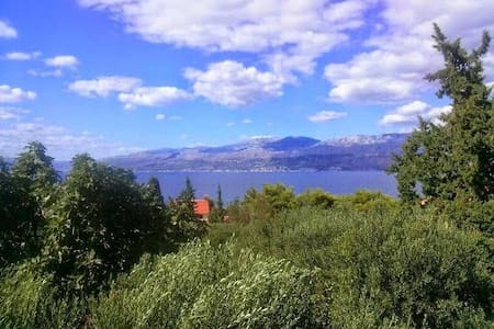 Ap.1 Beautiful apartement with a see view - Splitska - Daire
