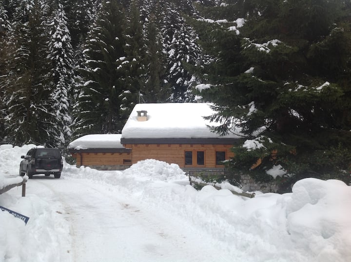 Bellissimo appartamento in Chalet alpino
