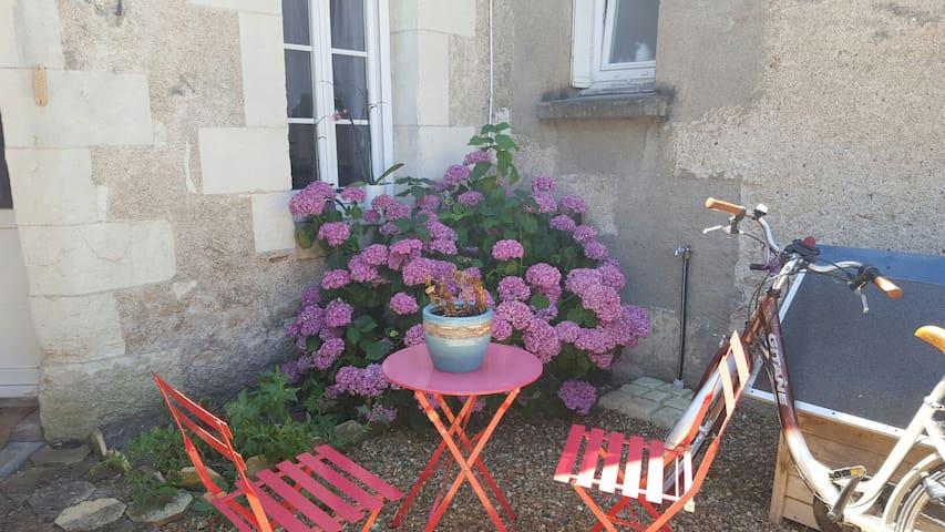 Maison à partager avec jardin et prêt de vélos. - La Ville-aux-Dames - Byhus