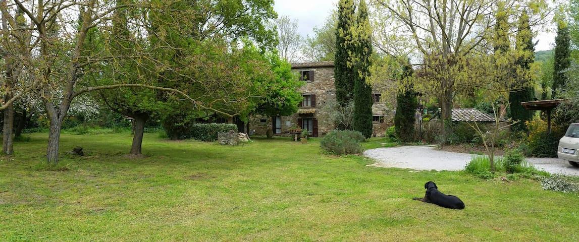 La Casa di Thelma a Cortona - Montanare - Lejlighed