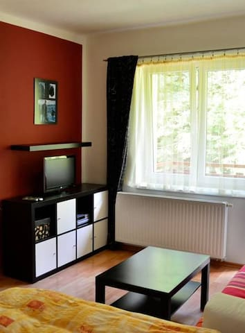Apartmán - Horní Lipová