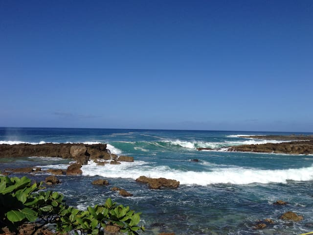 Nearby Sharks Cove for amazing snorkeling