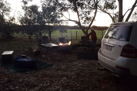 WILLIE WAGTAIL CAMP SITE MOORA shady 2wd level