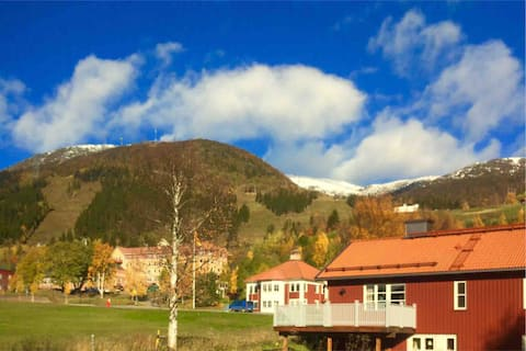 Compact apartment in villa. In the middle of Åre village!