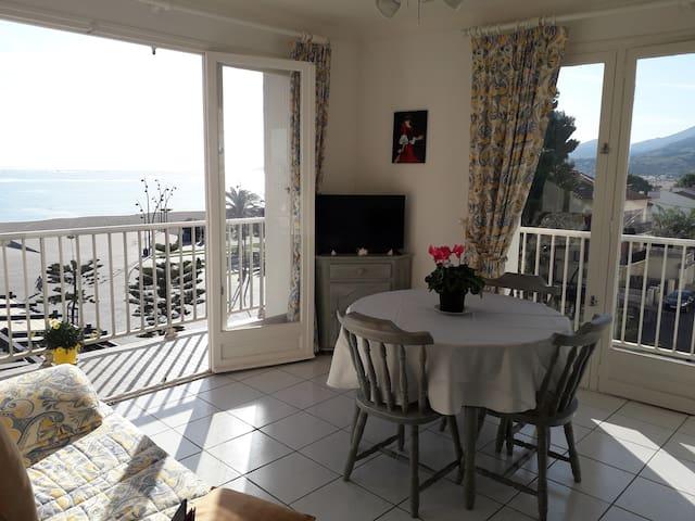 Appartement T2 vue mer accès direct plage.
