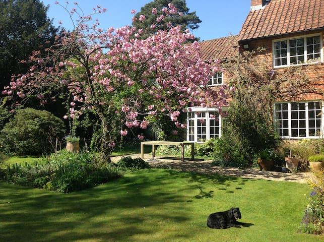 Rural Flat in lovely garden, easy stroll to pub.