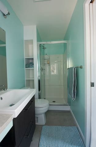 Roomy shower with glass door. Dr. Bronner's body soap is provided.