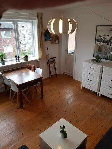Nice, light appartment near Søndermarken and Zoo