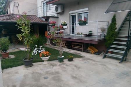 Mikis house
