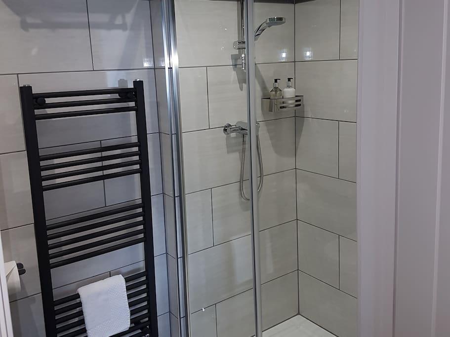 Birdoswald walkin shower