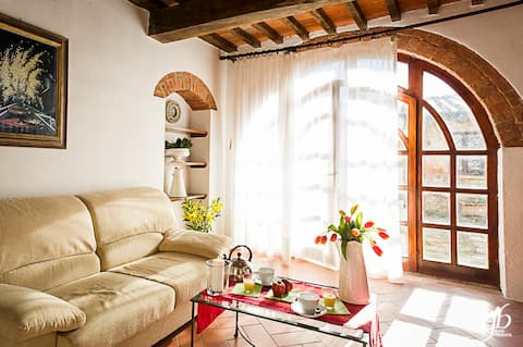Archi Apartment for 2 guests in Chianti