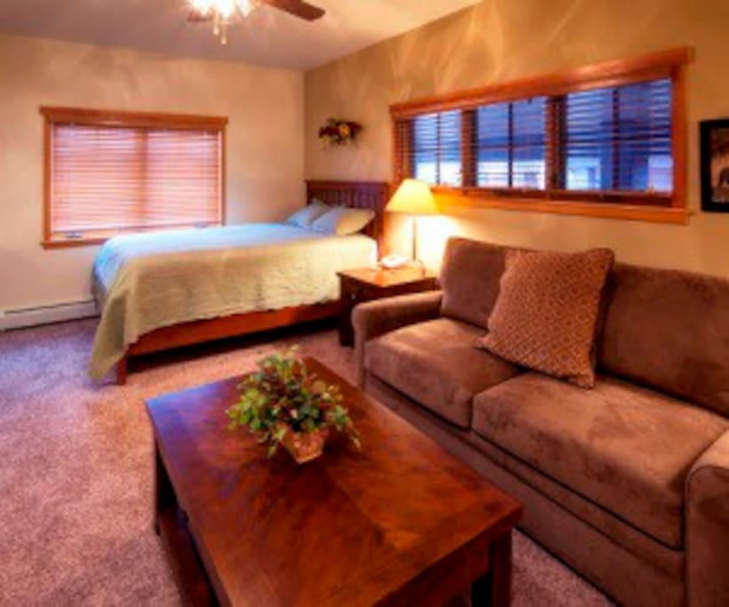 Luxury unit sleeps 4 with a queen bed and queen sofa sleeper.