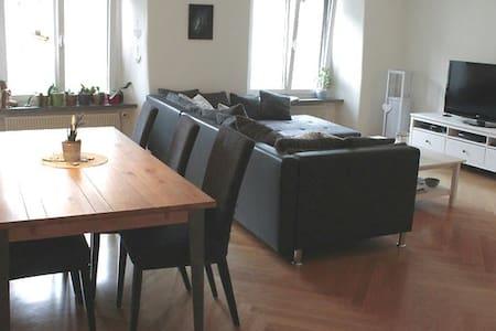 Beautiful apartment in the center of Schaffhausen - Шаффхаузен - Квартира