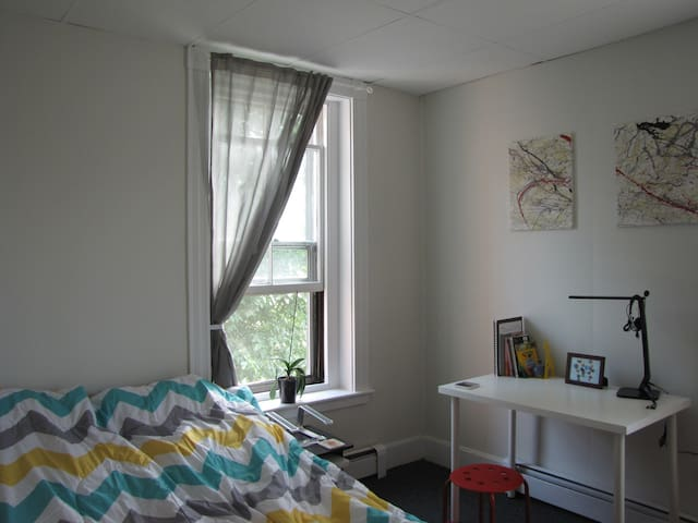 A Sunny Private Bedroom in Union Square - Somerville - Leilighet