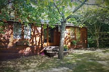 Cassofiel Therapies Log Cabin