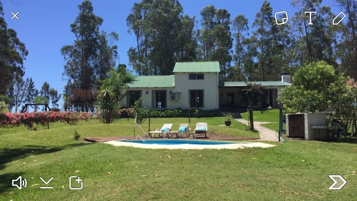 Great Country House - Vineyard area