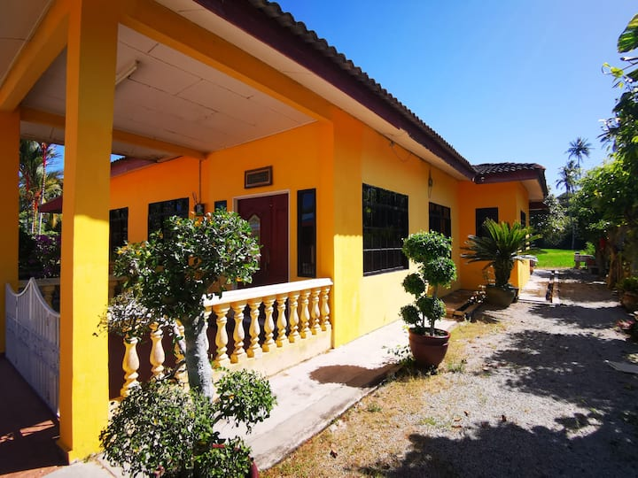 Cool Summer Vacation by the Paddy Field Homestay