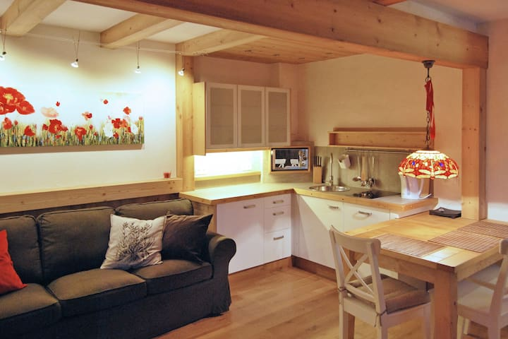 Cozy Apartment in the Center of Zakopane