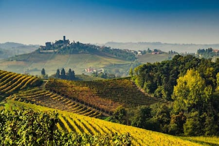 Your Italian home for wine and truffles