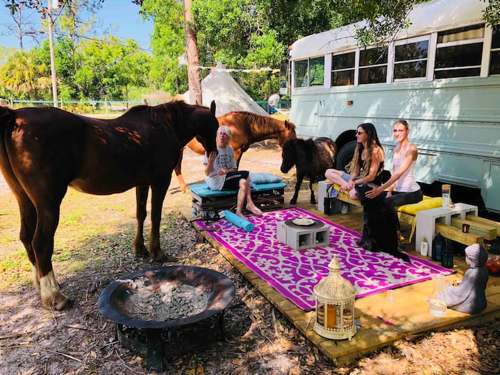 Woman Retreat and Flow with Animals.