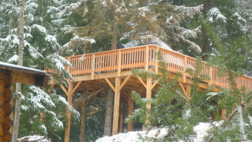 Cabane & Spa dans les arbres - Cheylade - Treehouse