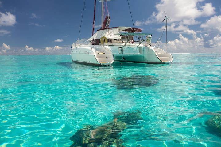 2 cabins in 46' catamaran in TAHITI and MOOREA - Papeete - Barco