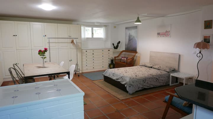 Basement Apartment near Plentzia