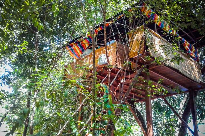 Alter do Chão, Treehouse in forest close to center