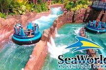 Seaworld Water Park in Orlando