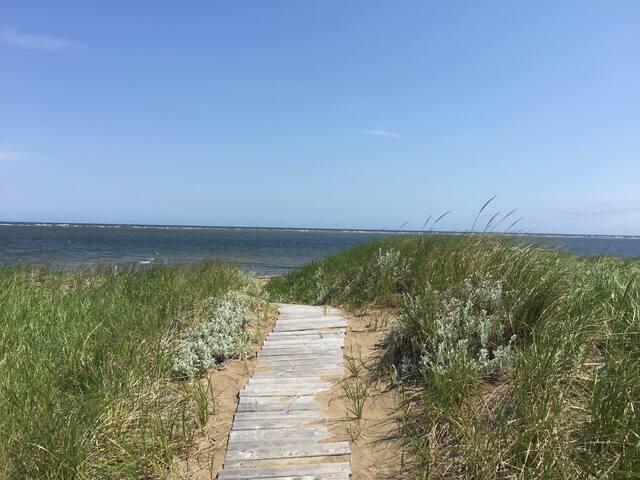 Sentier menant à la plage