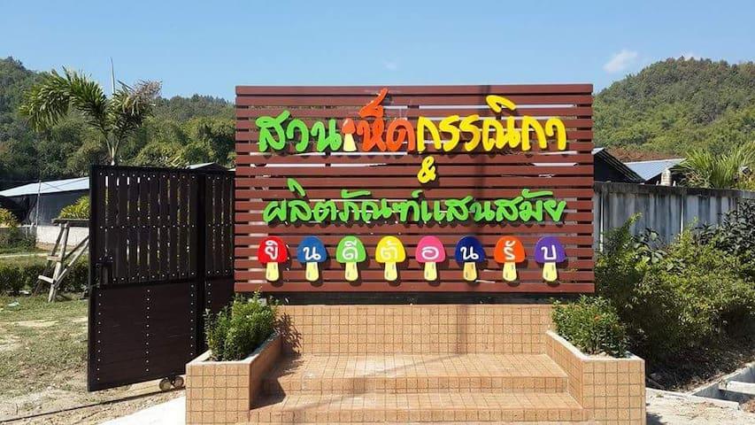 สวนเห็ดกรรณิกา - Mae Yao - Casa