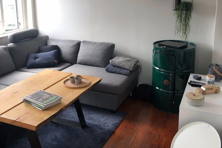 Hel lejlighed tæt på Nørresø og Viborg centrum