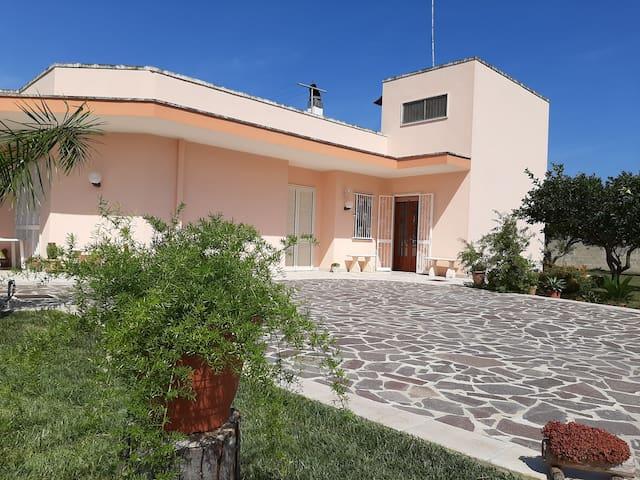Villa Elgiada B&B