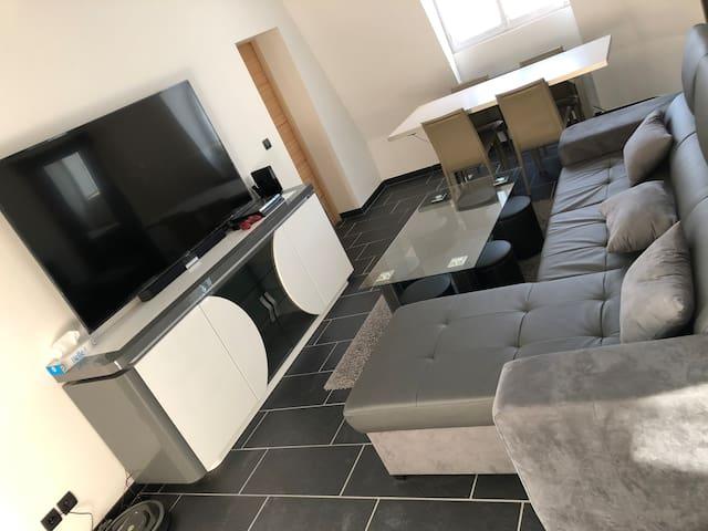 Appartement T2 entièrement rénové proche du centre