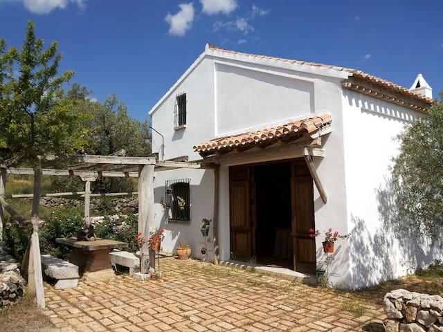 """Vivienda de Alojamiento Rural """"La Victoria"""" - Archidona - Loft"""