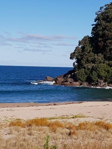 onemana beach chalets coromandel