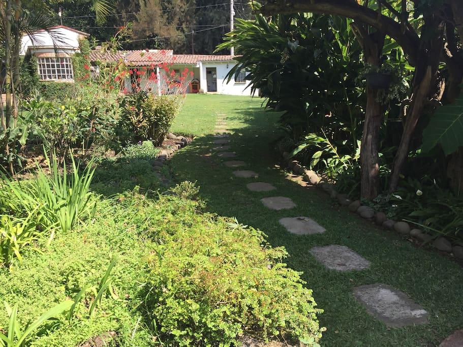 En medio de un hermoso jardín