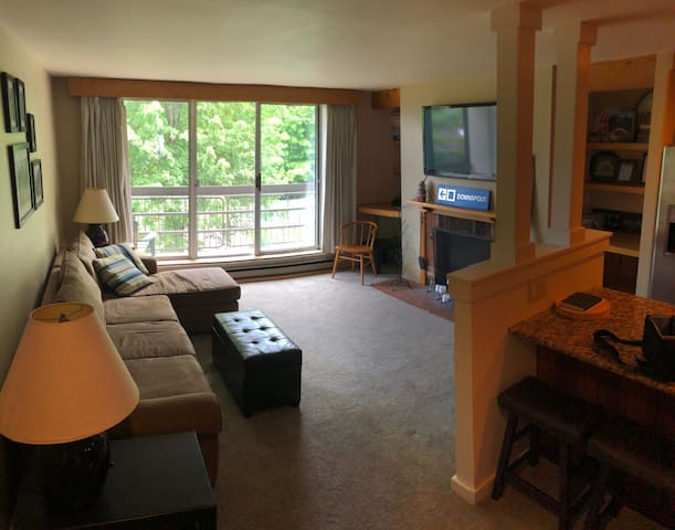 Sugarbush Ski-in/Ski-out Condo!