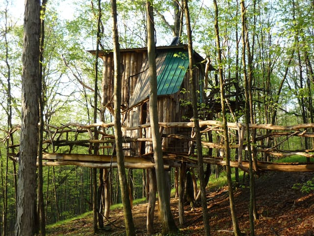 The Hermit Thrush Treehouse - West Pawlet - Puumaja