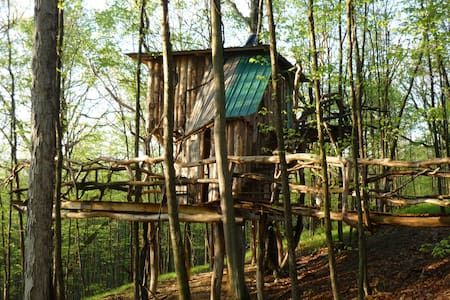 The Hermit Thrush Treehouse - West Pawlet - Boomhut