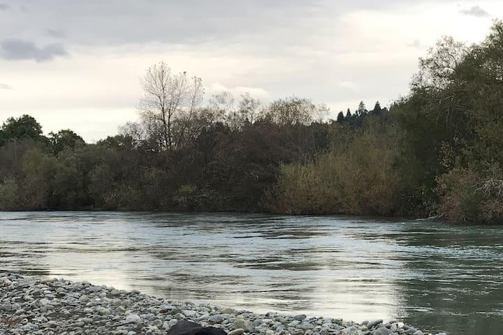 Springdale On The River