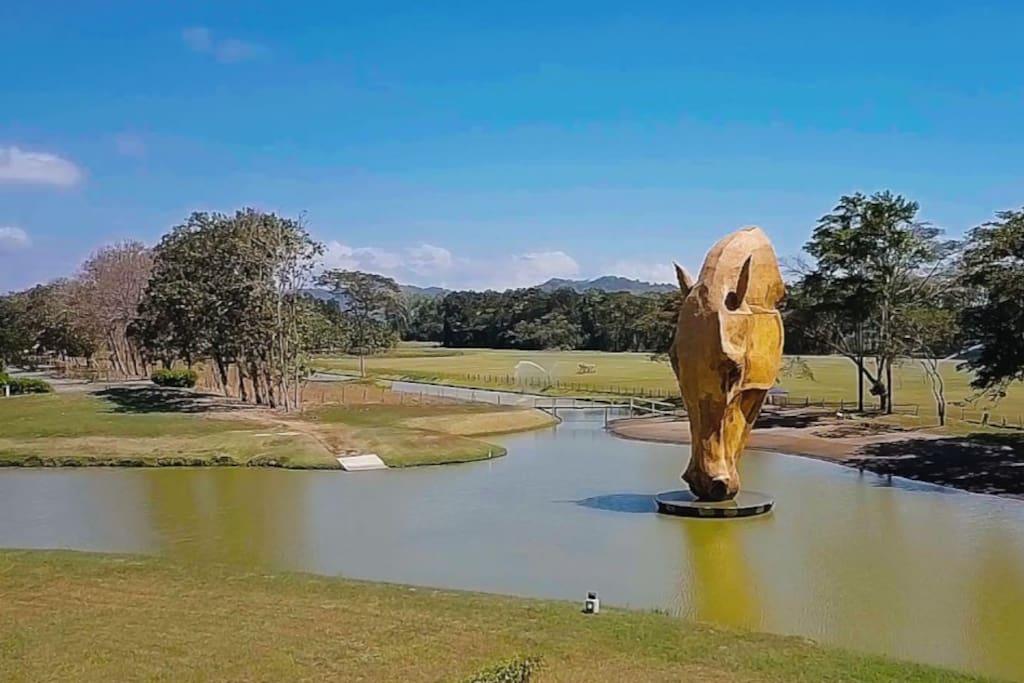 La imponente escultura de un caballo bebiendo agua del lago es impresionante