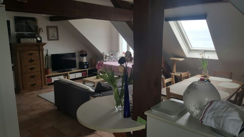 Charmant appartment at lakeside - Saint-Prex - Appartement