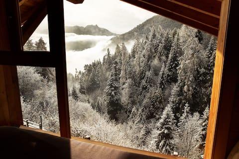 Appolin Chalet, Stunning Ovronnaz View