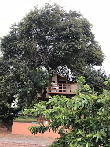 Tree House close to Bangalore
