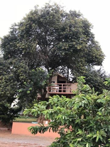 Tree House close to Bangalore
