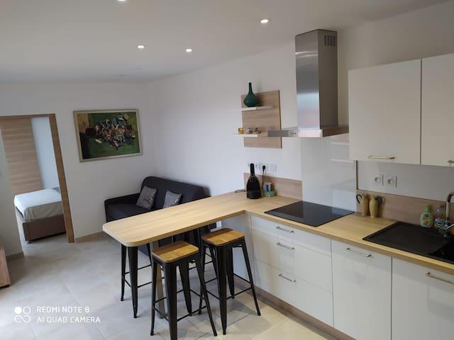 Séjour cuisine/living room open kitchen with bar