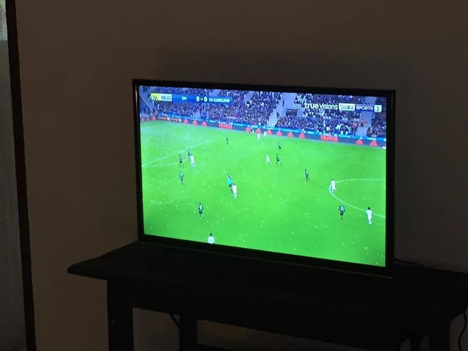 new flat screen tv with 166 cable channels, sports, movies, documentaries etc..